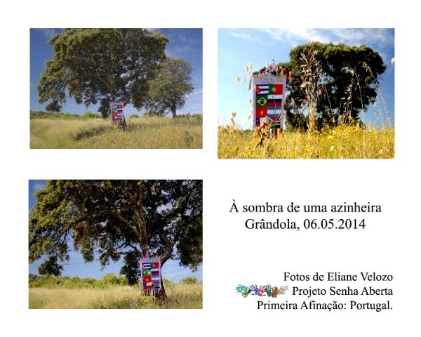 RED- Á SOMRA DE UUMARED-  AZINHEIRA cópia