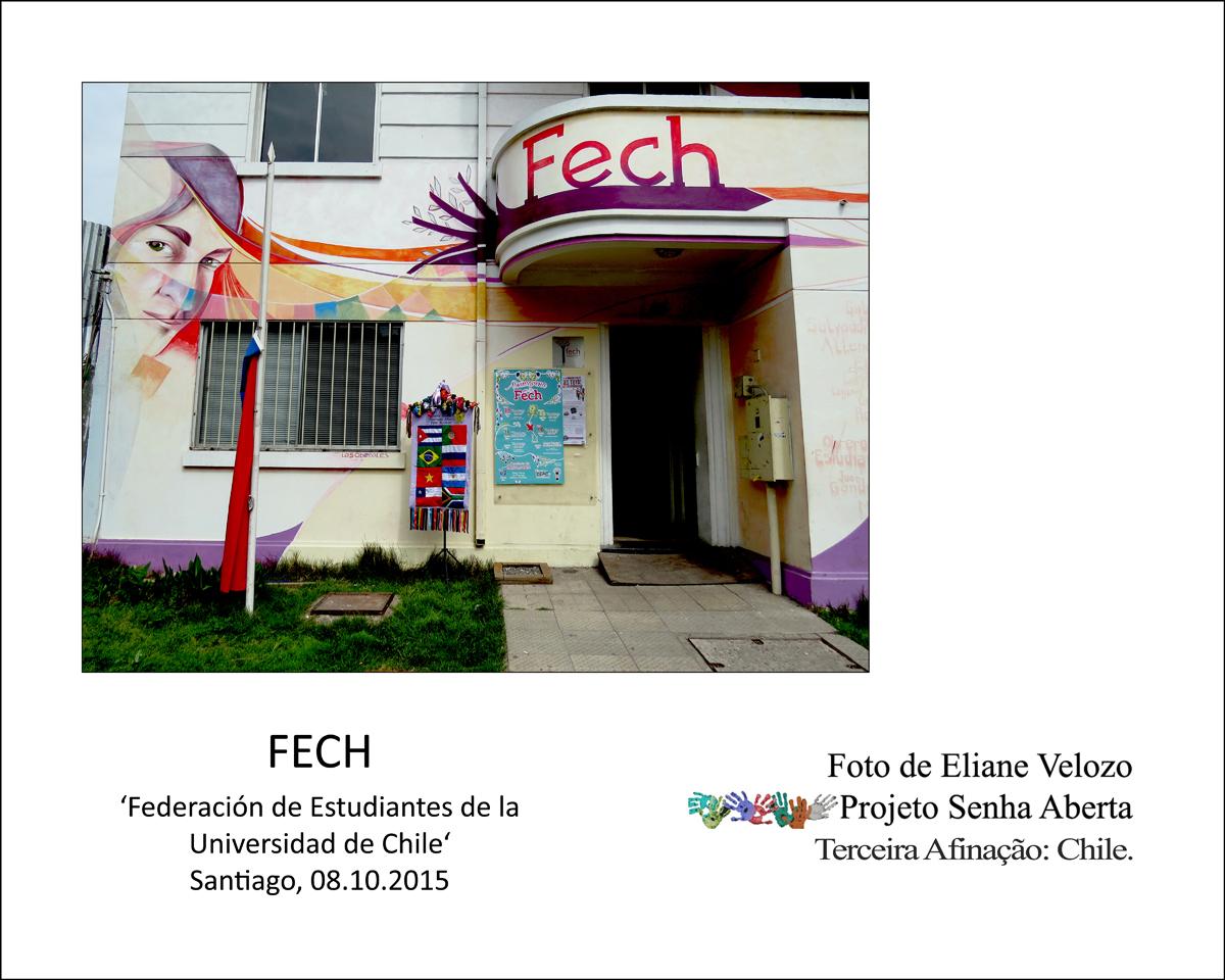 104- ESTANDARTE NA FRENTE DA FECH cópia